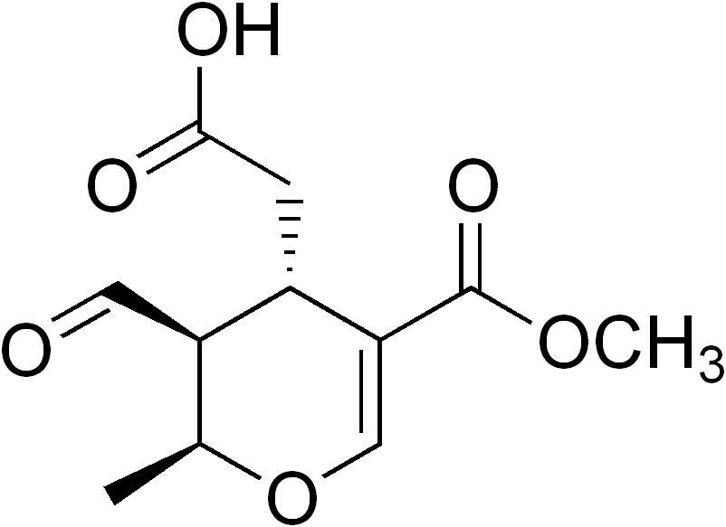 acido elenolico 1