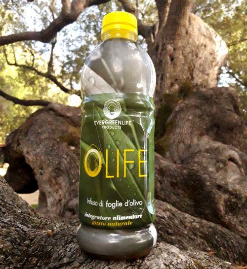 estratto di foglie di olivo controindicazioni 1